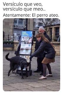 Perro orinando en cartel de testigos de Jehová
