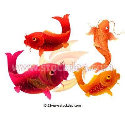 Vector Cá Chép PSD
