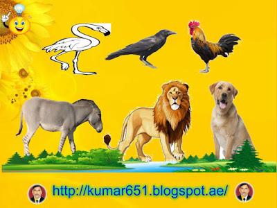 पशुओं से २० गुण सीखना चाहिए