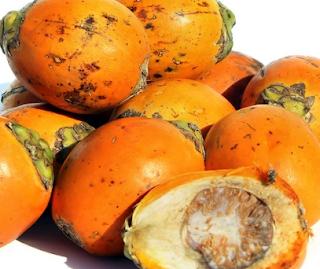 manfaat buah pinang untuk kesehatan dan kecantikan