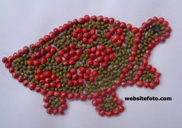 Contoh Kolase Gambar Kura-Kura dengan Biji Kacang Hijau dan Saga Telik