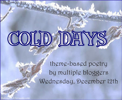 Cold Days, poetry based on a theme | Graphic property of www.BakingInATornado.com | #poetry