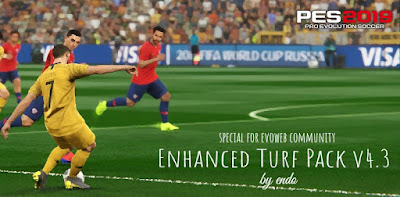 PES 2019 Enhanced Turf Pack V4.3 Reshade by Endo