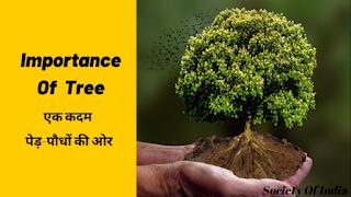 एक कदम पेड़-पौधों की ओर || Importance Of Tree In Hindi [Story essay],Importance Of Tree In Hindi,story of tree in hindi,essay on tree in hindi,story on tree in hindi