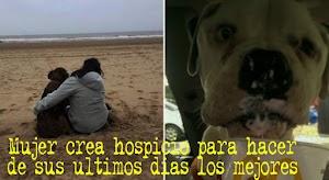 Mujer crea hospicio para perros moribundos y hacer de sus últimos días los mejores