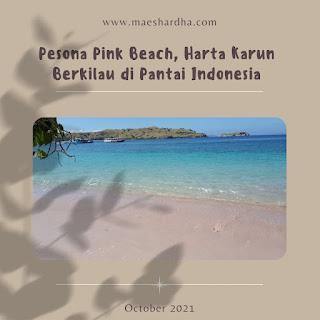 cover blog pink beach