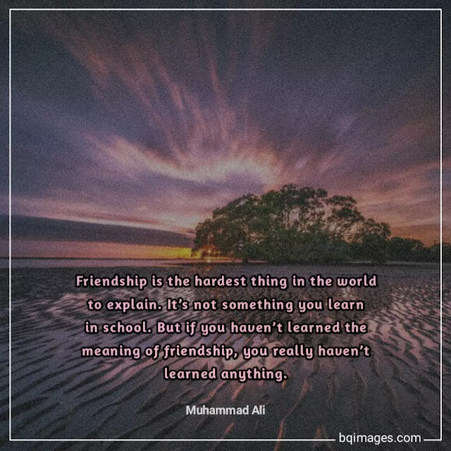 quotes about true friends