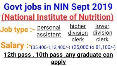 Sarkari naukri jobs 2019, jobs in NIN, 12th pass govt jobs