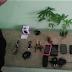 Polícia apreende maconha cultivada em cela de cadeia pública