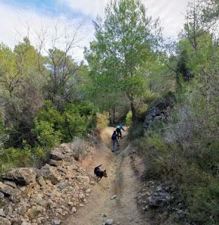 Ruta senderista por los alrededores del Tossal Gros de Castellón.