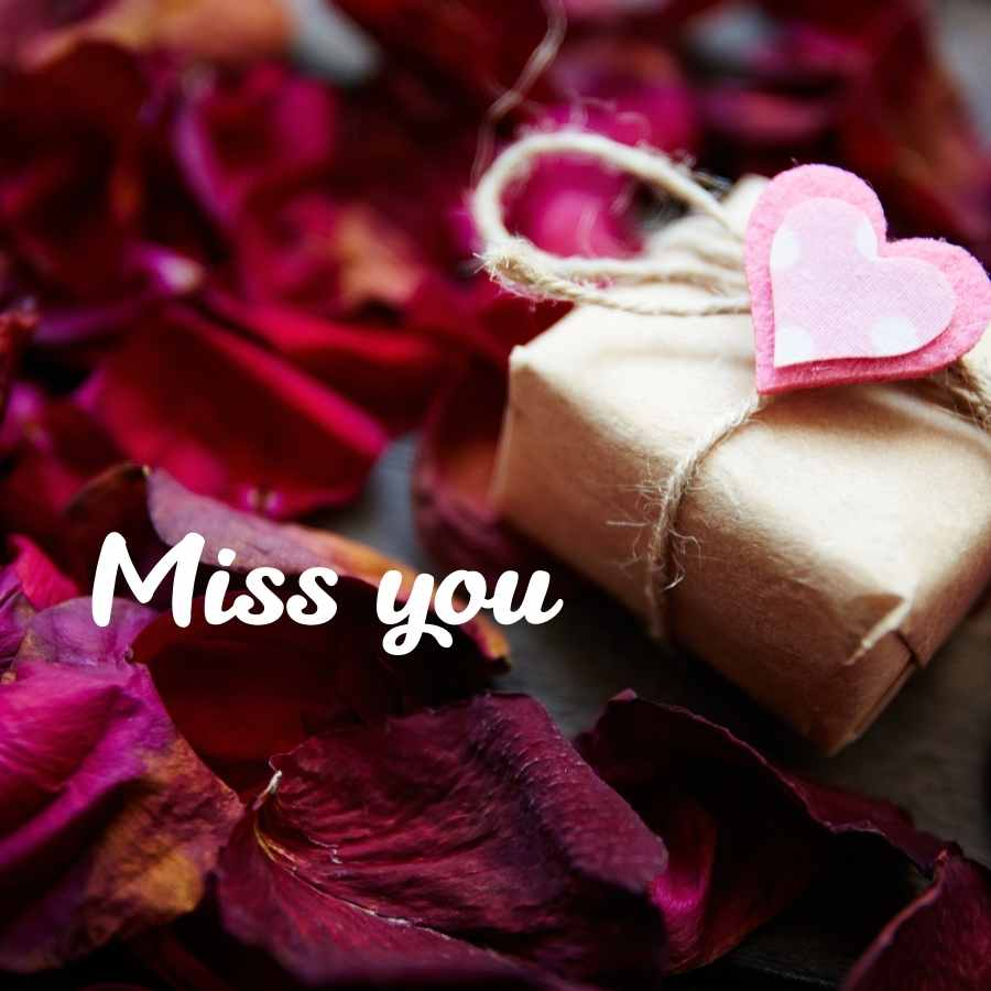 i miss you all images