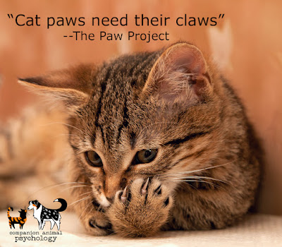"""A kitten licks her paws. Text reads """"Cat paws need their claws"""" - The Paw Project."""