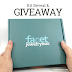 Winner of the Facet Jewelry Box Giveaway