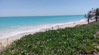 Piaszczyste plaże ciągnące się kilometrami