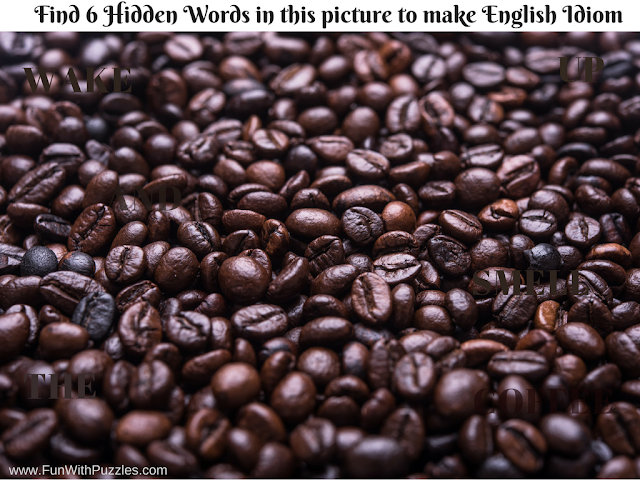 Hidden Words English Idiom Picture Puzzle