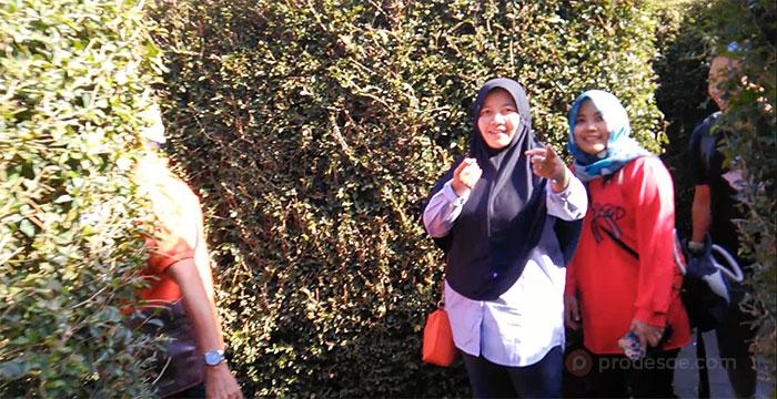Menjajal Labirin Coban Rondo Malang Jawa Timur