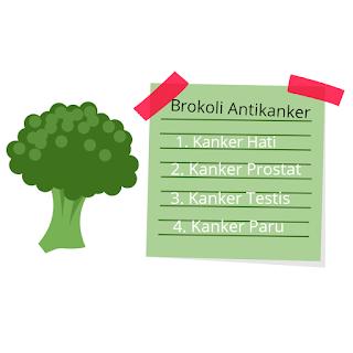 Kandungan gizi pada brokoli