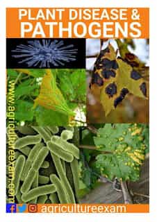 Plant Pathology Disease and Its pathogens table