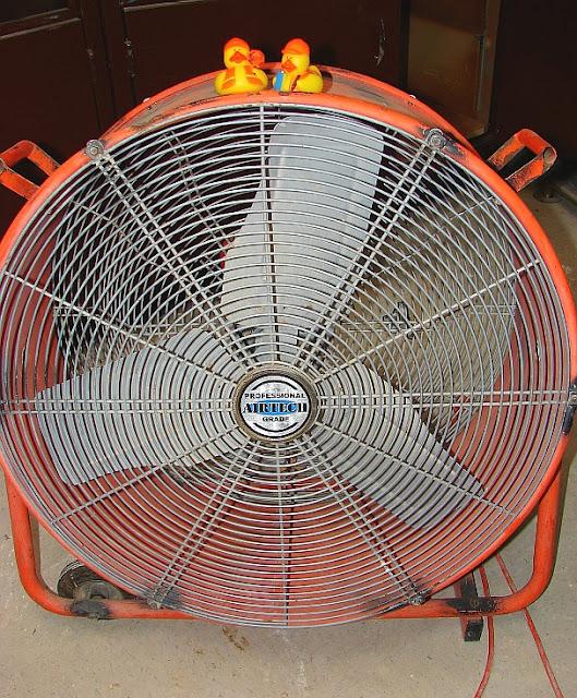 Bob & Howard (ducks) on big fan