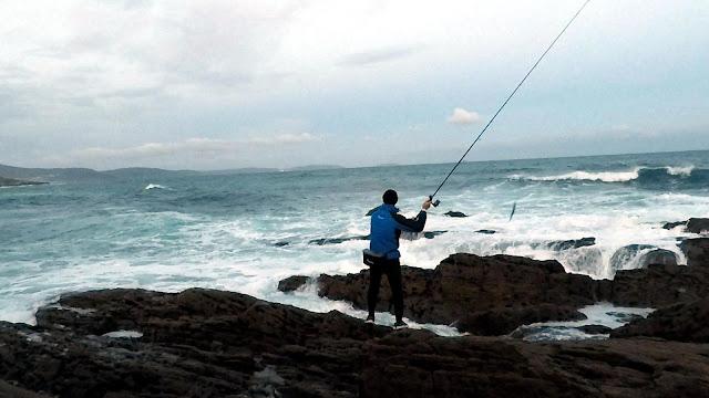 LANCE - Picadas lubinas muy cercanas a la costa