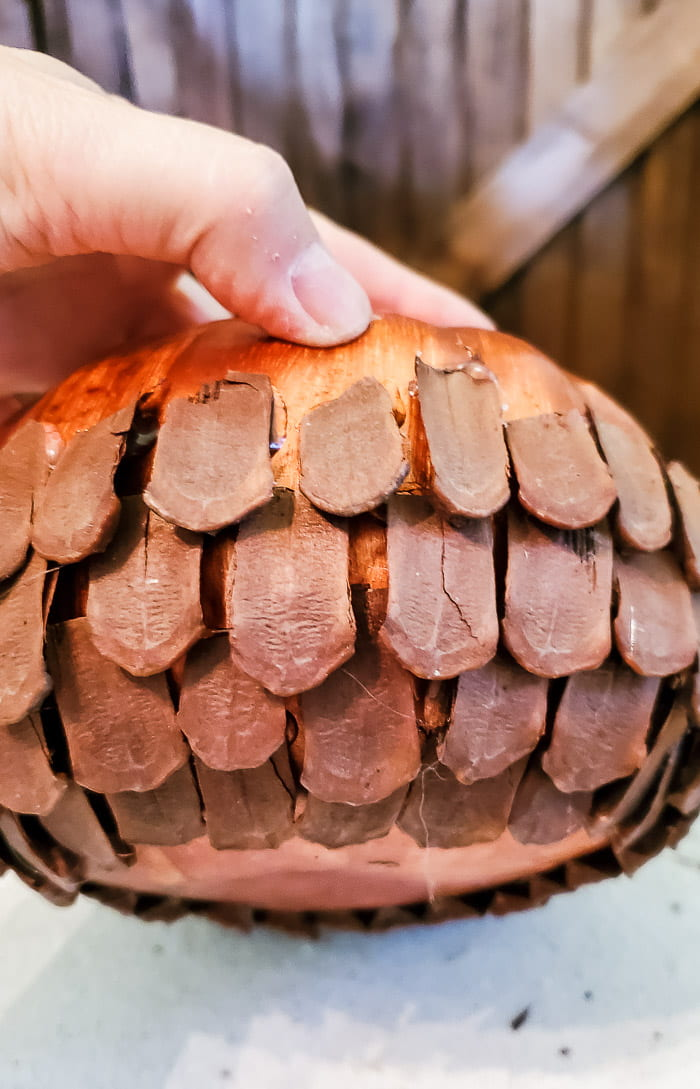glue pinecone scales in overlapping rows on pumpkin form