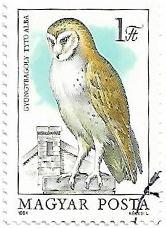 Selo Coruja-das-torres