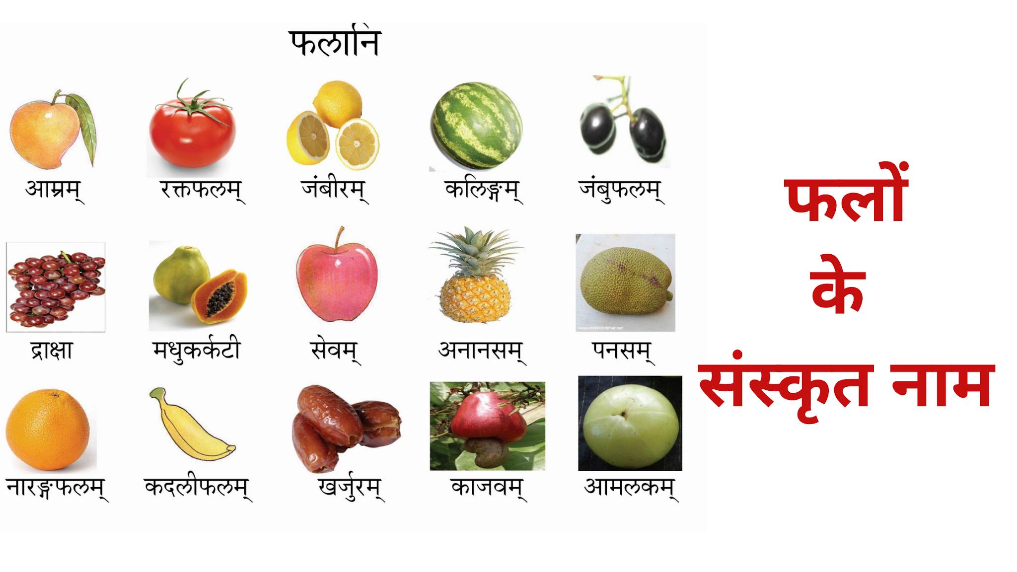 Fruits Names In Sanskrit,फलों के नाम संस्कृत में