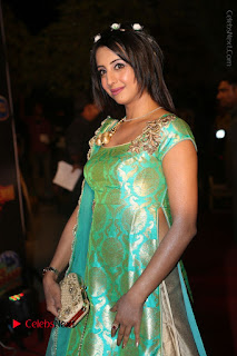 Actress Sanjjanaa Stills in Green Long Dress at Gemini TV Puraskaralu 2016 Event  0033.JPG