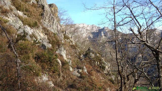 Zona de arbustos y bosque antes de Casielles