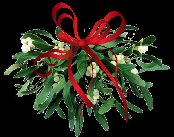 mistletoe+leaves.png