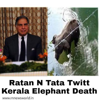 Ratan-Tata-twitt-kerala-elephant-death