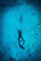 Freediving Maldives - PJ Freediving