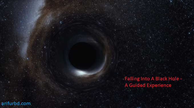 Fall Into A Black Hole - A Guided Experience