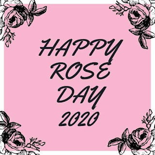 Rose Day Picture
