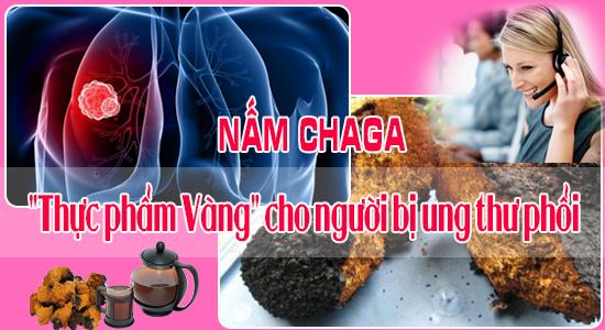 """Nấm Chaga """"thực phẩm Vàng"""" cho người bị ung thư phổi"""