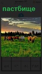 на пастбище пасутся домашняя скотина и лошади