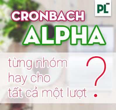 Chạy Cronbach Alpha cho từng nhóm hay cho tất cả