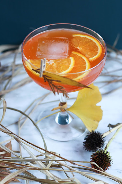 onoranza-aperitivo-orange,gin-waxwing,gin-quebecois,recette-cocktail,aperol,madame-gin