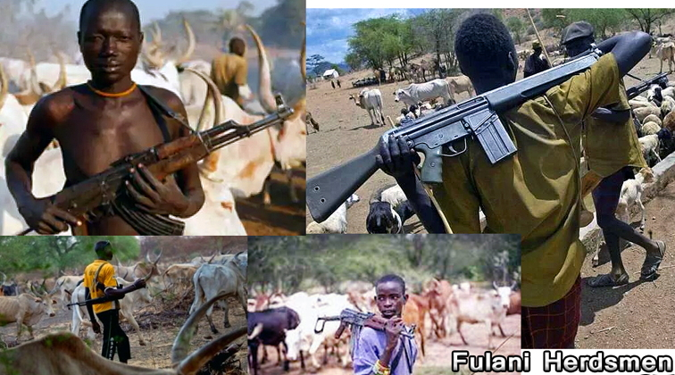 nigerian cow owners arming fulani herdsmen