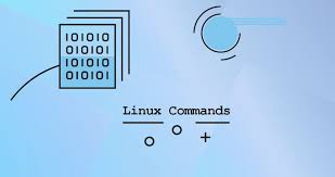 Basic Linux Commands on Raspberry pi(debian)