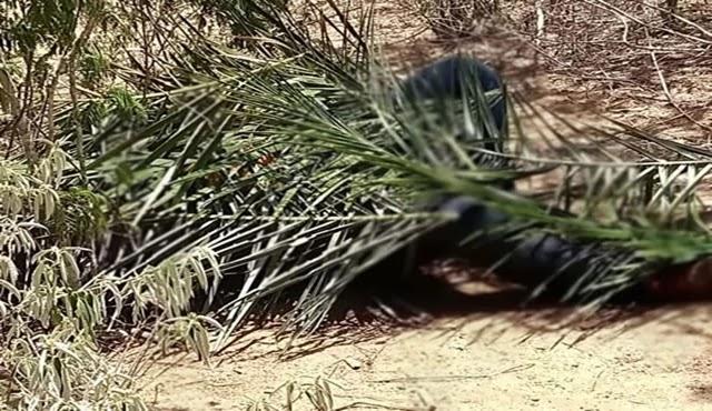 o corpo do mototaxista foi encontrado em um local próximo a propriedade de Vado