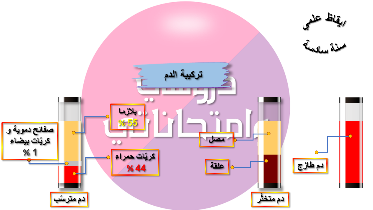 ايقاظ علمي سنة سادسة: تركيبة الدم (مكوّنات الدم)