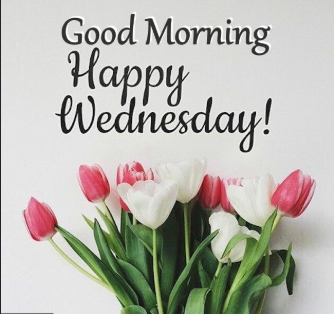 good morning happy Wednesday images Download
