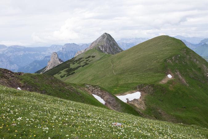 Blick vom Wildfeld zum Speikkogel, Stadelstein und Schwarzensteig | Theklasteig | Eisenerzer Alpen Höhenweg