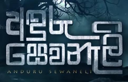 Anduru Sewaneli | Episode 19 |- 2020.11.24