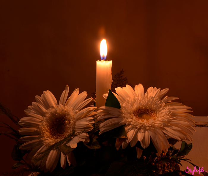 Image of a lit candle with a flame in the middle of two african daisy flowers