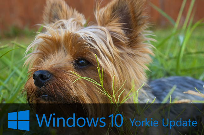 yorki-update-windows-10