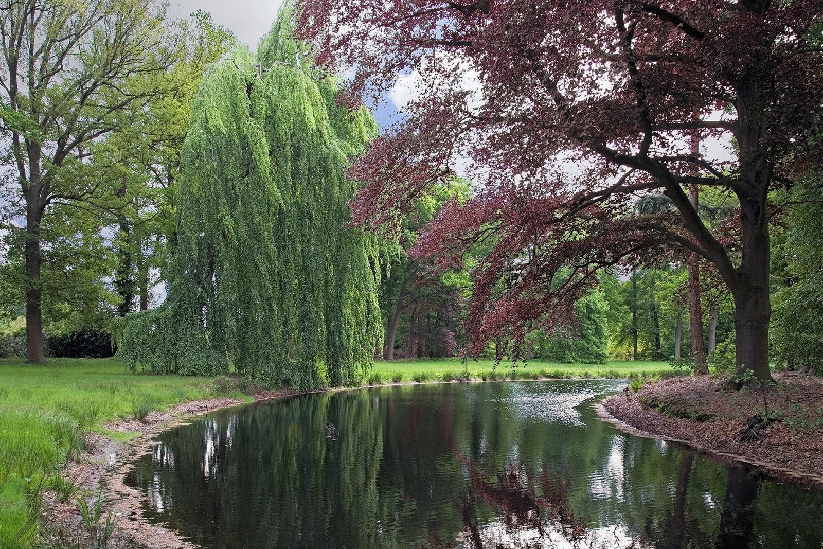 Engelse Landschapsstijl Tuin : Weblog brabant collectie: engelse tuinen in noord brabant