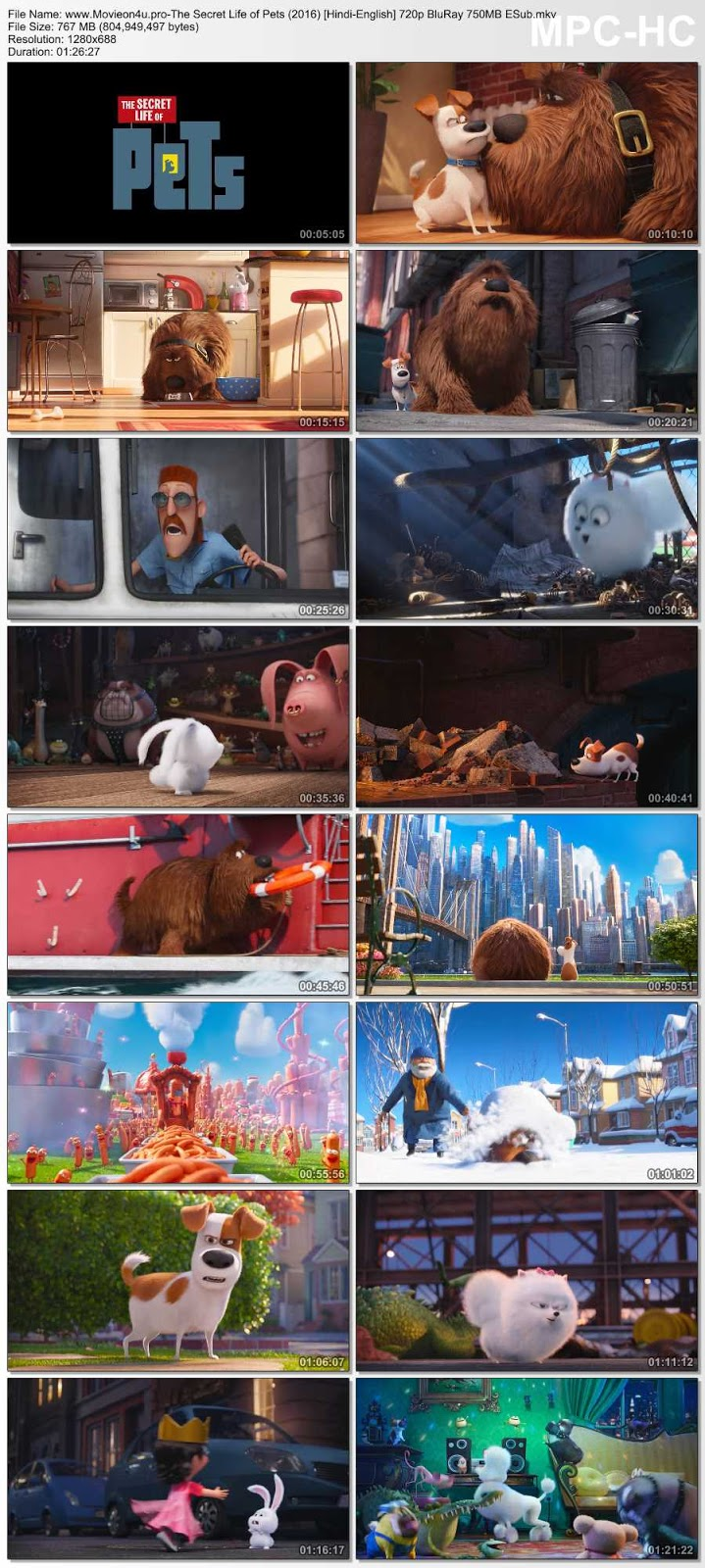>The Secret Life of Pets (2016) 480p Dual Audio In [Hindi English]