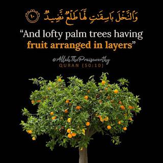 islamic wallpapers english
